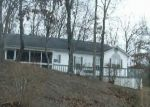 Foreclosed Home in Blue Ridge 30513 164 RIVERWOOD DR - Property ID: 1702259