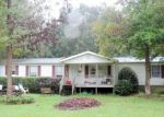 Foreclosed Home in Rocky Point 28457 22 WELLS CT - Property ID: 2878684