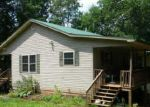 Foreclosed Home in Blue Ridge 30513 1270 WILLARD MOUNTAIN RD - Property ID: 2889896