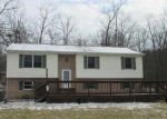 Foreclosed Home in Newville 17241 167 BEETEM HOLLOW RD - Property ID: 3016397