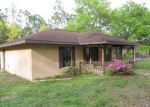 Foreclosed Home in Brooksville 34601 27251 HIAWATHA BLVD - Property ID: 3283466