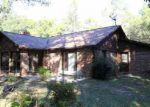Foreclosed Home in Pawleys Island 29585 99 GREENFIELD RD - Property ID: 3315625
