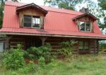Foreclosed Home in Sevierville 37876 3459 ARNOLD PARK WAY - Property ID: 3346138