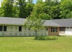 Foreclosed Home in Shingleton 49884 N5983 PERCY RD - Property ID: 3361908