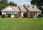 Foreclosed Home in Wildwood 34785 2456 COUNTY ROAD 222 - Property ID: 3376896