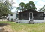 Foreclosed Home in Myakka City 34251 44617 STATE ROAD 64 E - Property ID: 3383298