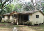 Foreclosed Home in Mount Dora 32757 6522 BERG DR - Property ID: 3419327