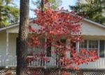 Foreclosed Home in Marion 29571 1411 BOBBY L DAVIS BLVD - Property ID: 3455467