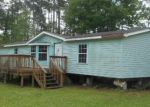 Foreclosed Home in Middleburg 32068 2161 BLUEBILL RD - Property ID: 3611601