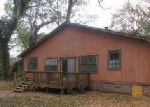 Foreclosed Home in Tallahassee 32309 3338 LUCKY DEBONAIR TRL - Property ID: 3625126
