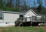 Foreclosed Home in Mineral Bluff 30559 961 CUTCANE RD - Property ID: 3625265