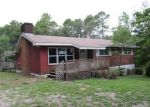 Foreclosed Home in Middleburg 32068 4037 GREEN ACRE RD - Property ID: 3747207