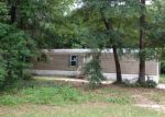 Foreclosed Home in Tallahassee 32317 12638 JEFFERSON CT - Property ID: 3752710