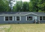 Foreclosed Home in Coleman 48618 336 JACKSON ST - Property ID: 3807531