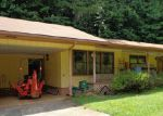 Foreclosed Home in Helen 30545 565 HIGHWAY 356 - Property ID: 3821785