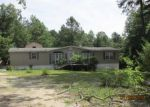 Foreclosed Home in Orangeburg 29115 223 FROLIC MEADOWS LN - Property ID: 3833676