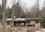 Foreclosed Home in Sidney Center 13839 1188 WHEAT HILL RD - Property ID: 3889833