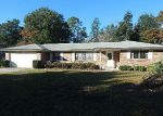 Foreclosed Home in Orange Park 32073 483 CODY DR - Property ID: 3892111