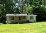 Foreclosed Home in Atkinson 28421 229 RED CROSS ST - Property ID: 4012893