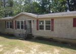 Foreclosed Home in Pell City 35128 340 TURTLE ROCK RD - Property ID: 4037796