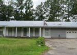 Foreclosed Home in Georgetown 29440 881 MCDONALD RD - Property ID: 4039735